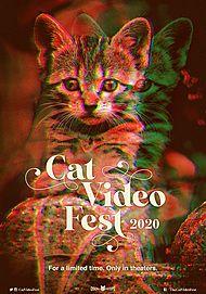 """Affiche du film """"CATVIDEOFEST 2020"""""""