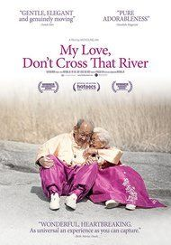 """Movie poster for """"MY LOVE, DON'T CROSS THAT RIVER"""""""