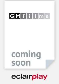 """Movie poster for """"Wie einem Blinden die Farben erklären"""""""